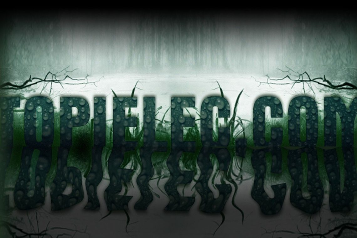 Blog Topielec.com